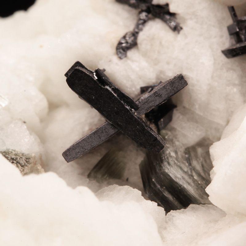 Columbite-Tantalite (fine crystals) on Albite with Muscovite