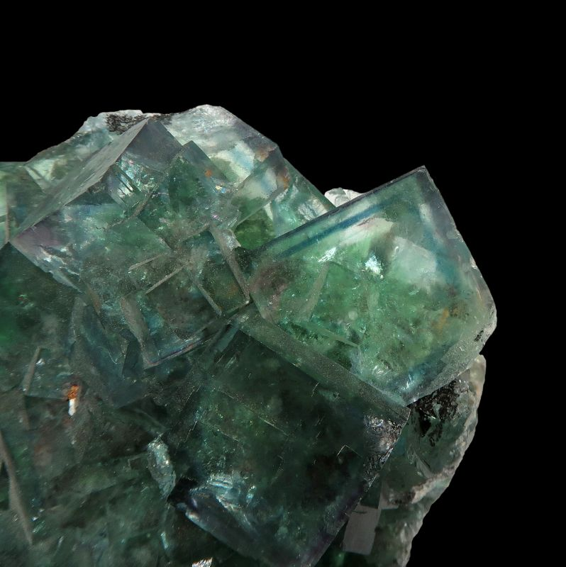 Fluorite (fluorescent) ex Jack Halpern Collection