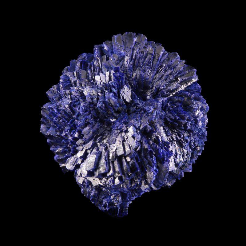 """Azurite (excellent large """"rose"""") (classic material)"""