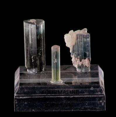 Bi-colored Tourmalines & Quartz (Larson Coll.)
