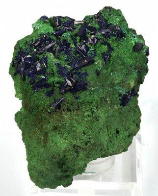 Azurite on Bayldonite (old classic)